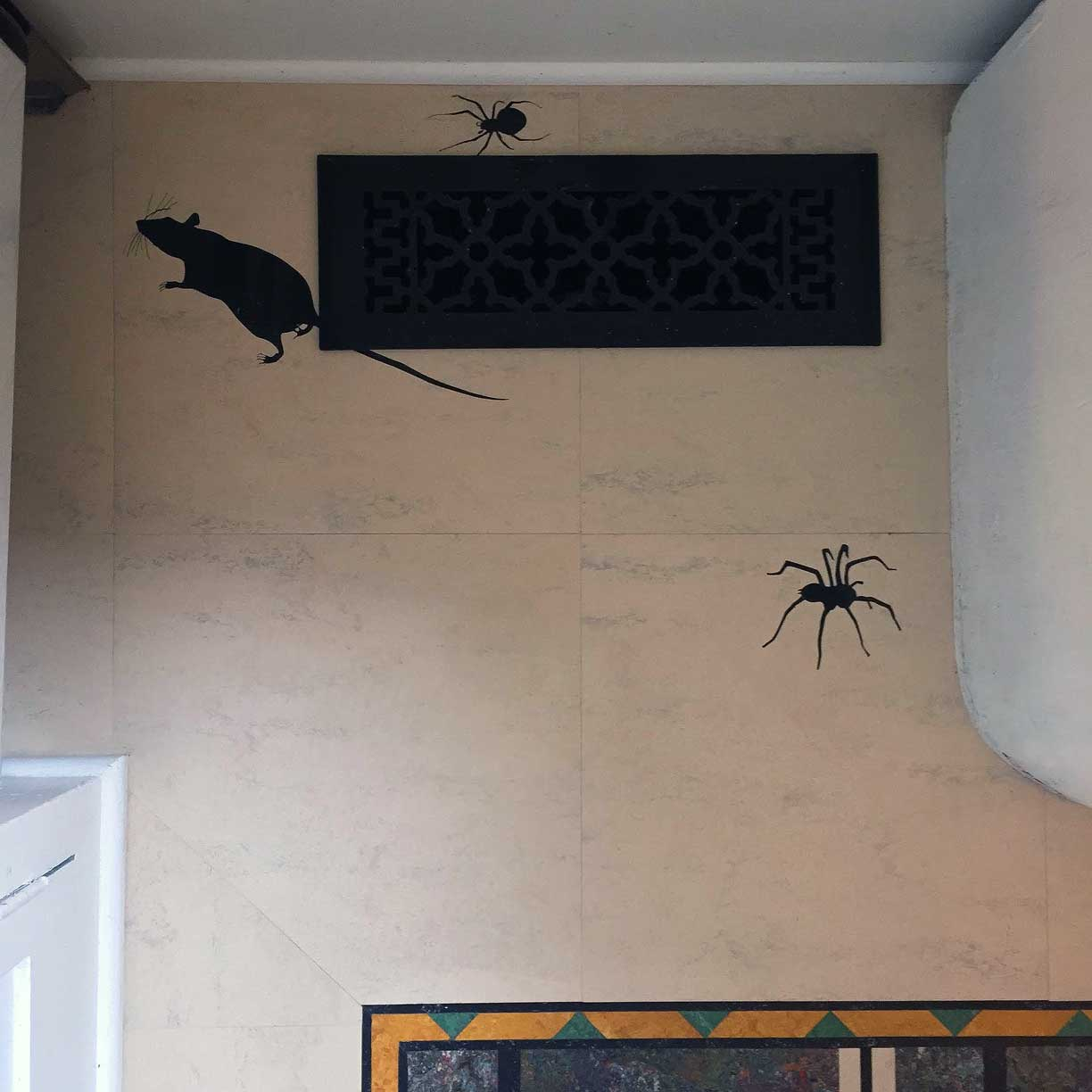 web-crogan-rat-spiders